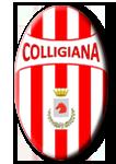 logo colligiana main