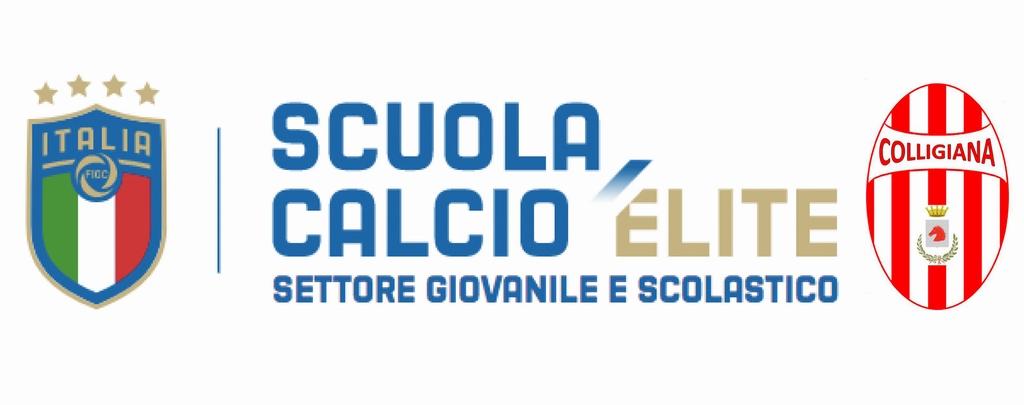 Calendario Figc Pulcini 2006.Scuola Calcio Qualificata Figc Colligiana Calcio